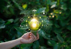 Sostenibilidad, profesionalidad y experiencia. El secreto de las mejores empresas